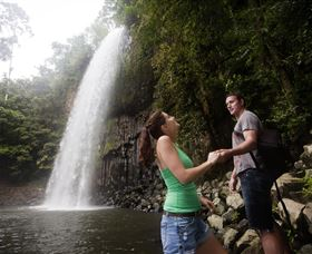 Millaa Millaa Falls - Accommodation Nelson Bay