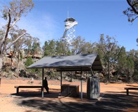 Pilliga Forest Lookout Tower - Accommodation Nelson Bay
