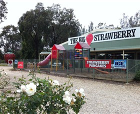 The Big Strawberry - Accommodation Nelson Bay