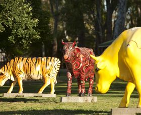 Greater Shepparton's Moooving Art - Accommodation Nelson Bay