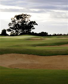 Black Bull Golf Club - Accommodation Nelson Bay