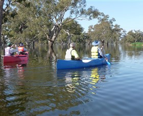 Doodle Cooma Swamp - Accommodation Nelson Bay