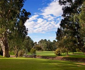 Commercial Golf Course - Accommodation Nelson Bay