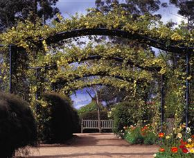 Blue Mountains Botanic Garden - Accommodation Nelson Bay