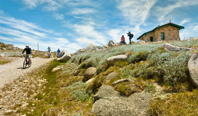 Mount Kosciuszko Summit walk - Accommodation Nelson Bay