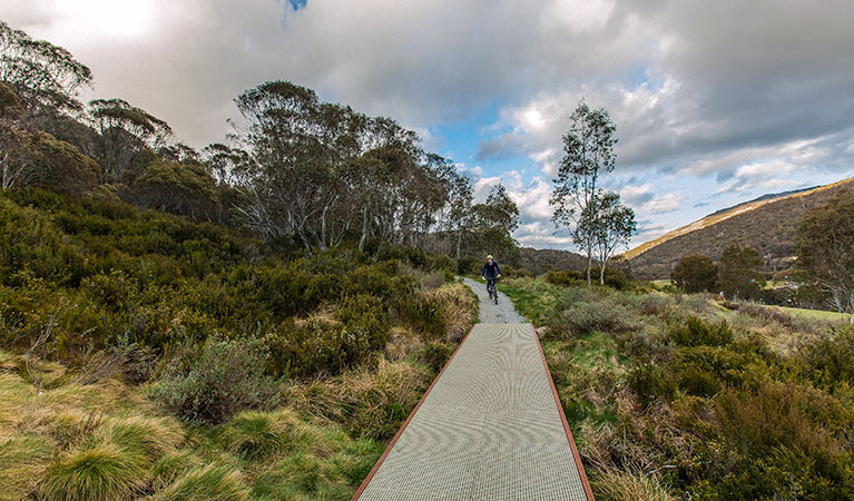 Thredbo Valley track - Accommodation Nelson Bay
