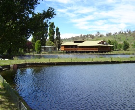 Gaden Trout Hatchery - Accommodation Nelson Bay