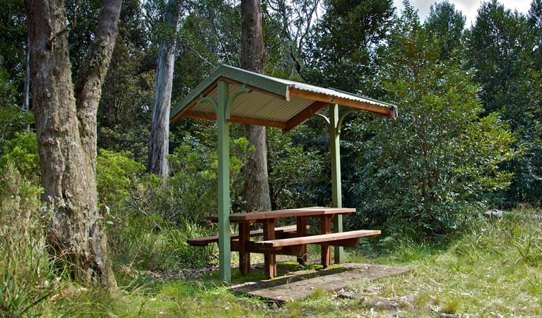 Devils Hole lookout walk and picnic area - Accommodation Nelson Bay