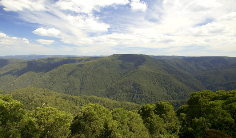 Barrington Tops National Park - Accommodation Nelson Bay