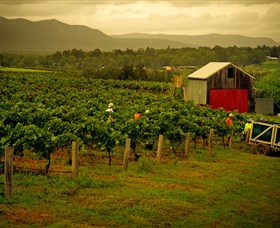 Around Hermitage Wine and Food Trail Hunter Valley - Accommodation Nelson Bay