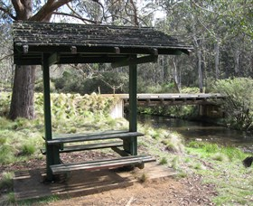 Barrington Tops State Forest - Accommodation Nelson Bay