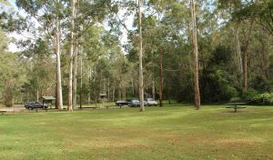 Mill Creek picnic area - Accommodation Nelson Bay