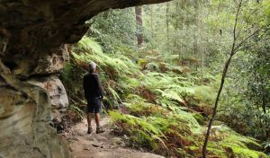 Dharug National Park - Accommodation Nelson Bay
