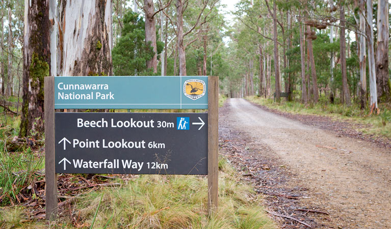 Beech lookout - Accommodation Nelson Bay