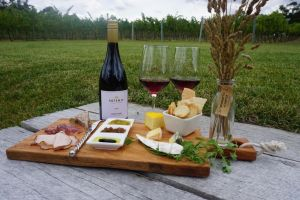 Artemis Wines - Accommodation Nelson Bay