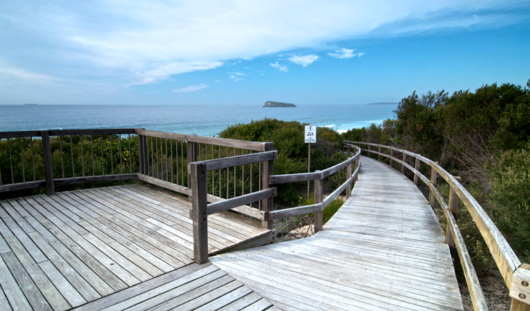 Tea Tree picnic area and lookout - Accommodation Nelson Bay