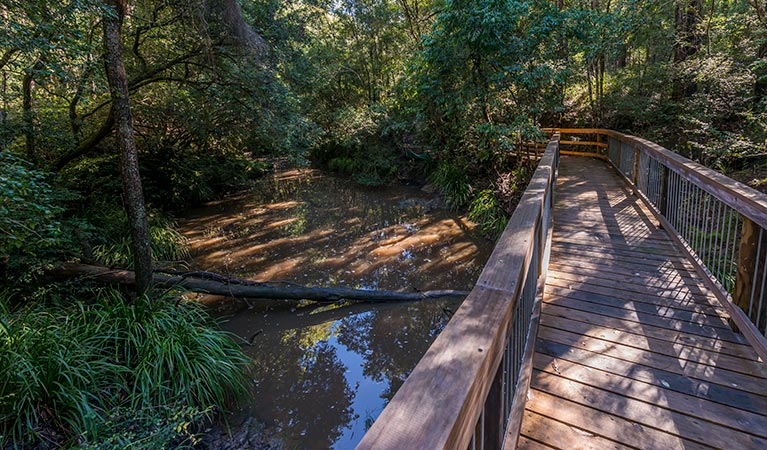 Ms Kellys walking track - Accommodation Nelson Bay