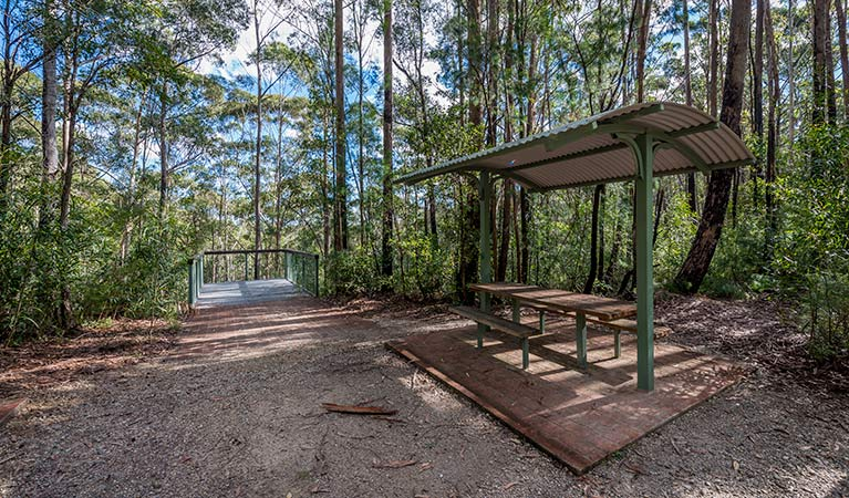 Big Nellie lookout and picnic area - Accommodation Nelson Bay