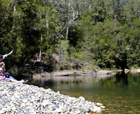 Mount Boss State Forest - Accommodation Nelson Bay