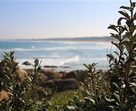 Cape Conran Nature Trail - Accommodation Nelson Bay