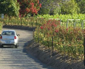 Cassegrain Wines - Accommodation Nelson Bay
