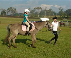 Port Macquarie Horse Riding Centre - Accommodation Nelson Bay
