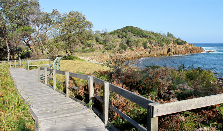 Mimosa Rocks walking track - Accommodation Nelson Bay