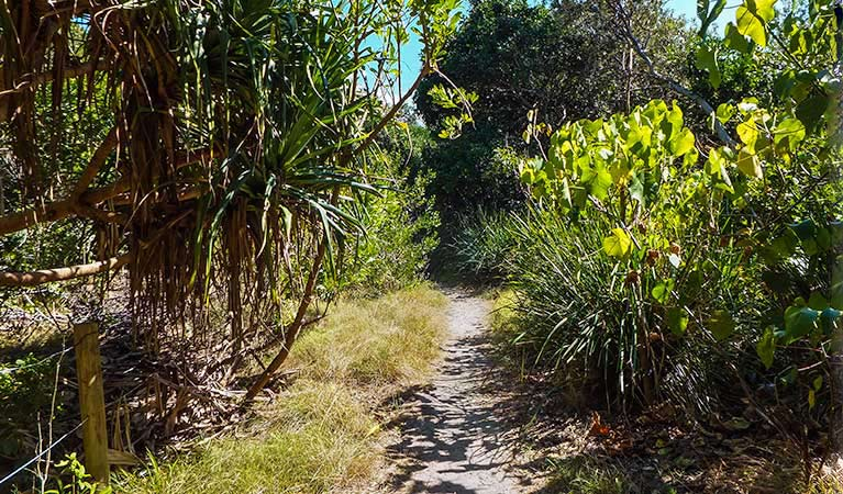 North Head walking track - Accommodation Nelson Bay