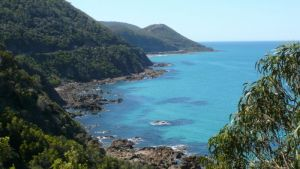 Australian Natural Treasures Touring - Accommodation Nelson Bay