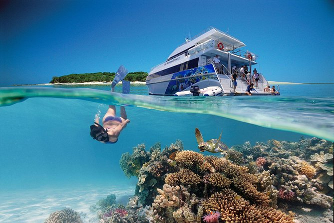 3-Day Southern Great Barrier Reef Tour Including Lady Musgrave Island - Accommodation Nelson Bay