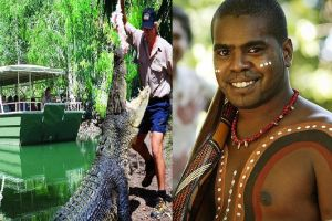 Hartley's Crocodile Adventures and Tjapukai Cultural Park Day Trip from Cairns - Accommodation Nelson Bay