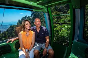 Skyrail Rainforest Cableway Day Trip from Palm Cove - Accommodation Nelson Bay
