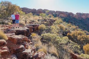Kings Canyon Day Trip from Ayers Rock - Accommodation Nelson Bay