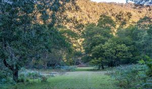 Griffins walking track - Accommodation Nelson Bay