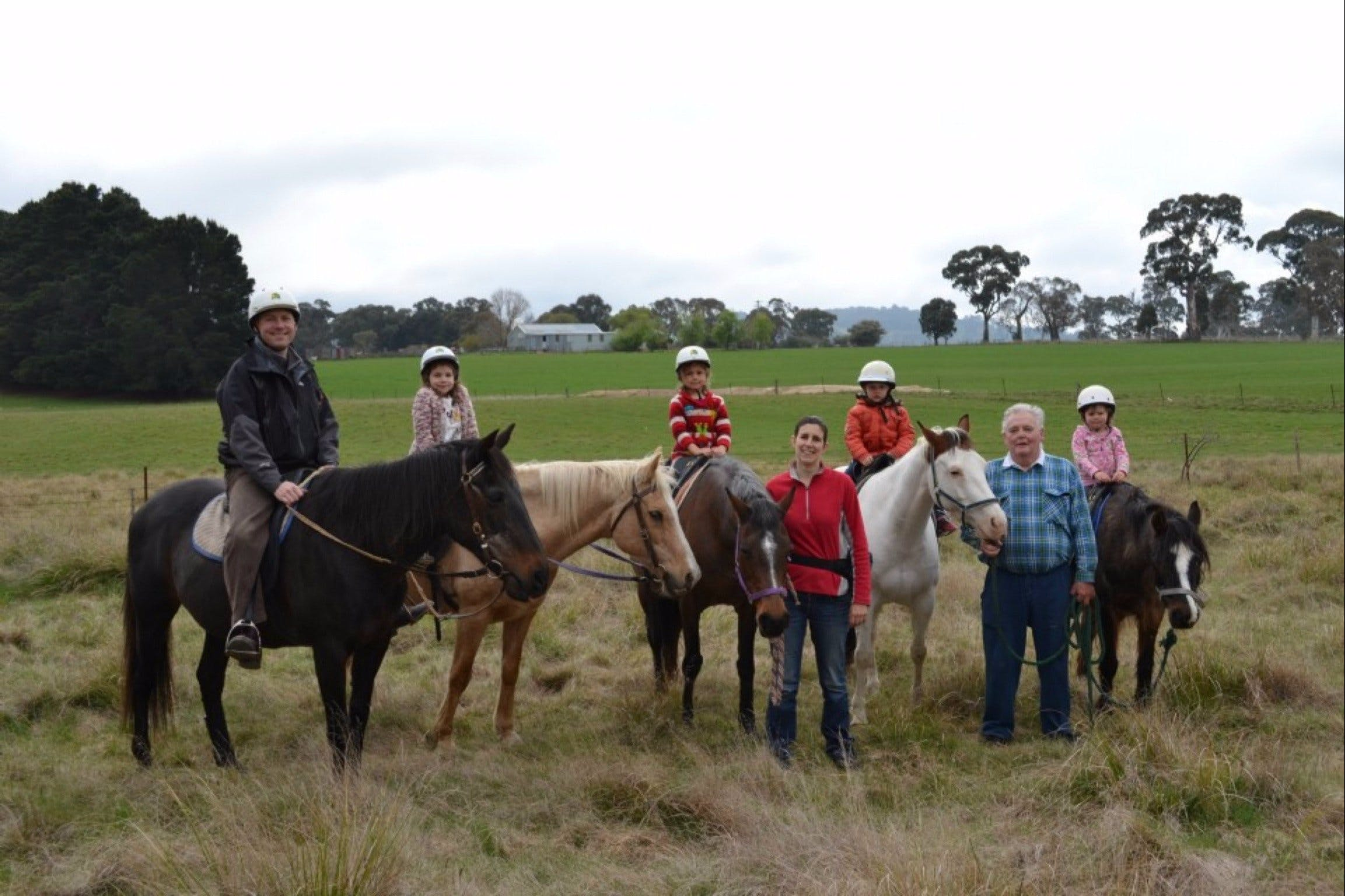 High Country Trail Rides - Accommodation Nelson Bay