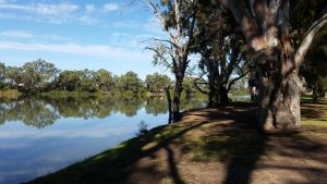 Murray River National Park - Katarapko - Accommodation Nelson Bay