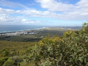 Mount Coolum National Park - Accommodation Nelson Bay