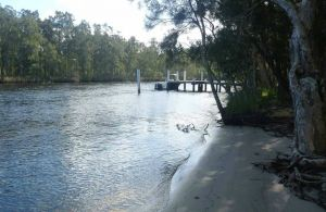 Engels Reach picnic area - Accommodation Nelson Bay