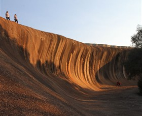 Wave Rock - Accommodation Nelson Bay