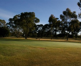 Winchelsea Golf Club - Accommodation Nelson Bay