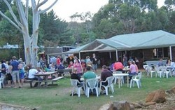 Bush Shack Brewery - Accommodation Nelson Bay