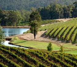 Brookhampton Estate Vineyard - Accommodation Nelson Bay