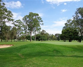 Singleton Golf Club - Accommodation Nelson Bay