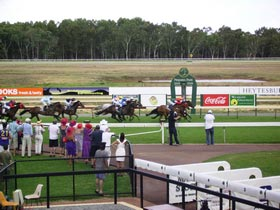 Pinjarra Race Club - Accommodation Nelson Bay