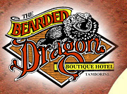 The Bearded Dragon Hotel - Accommodation Nelson Bay