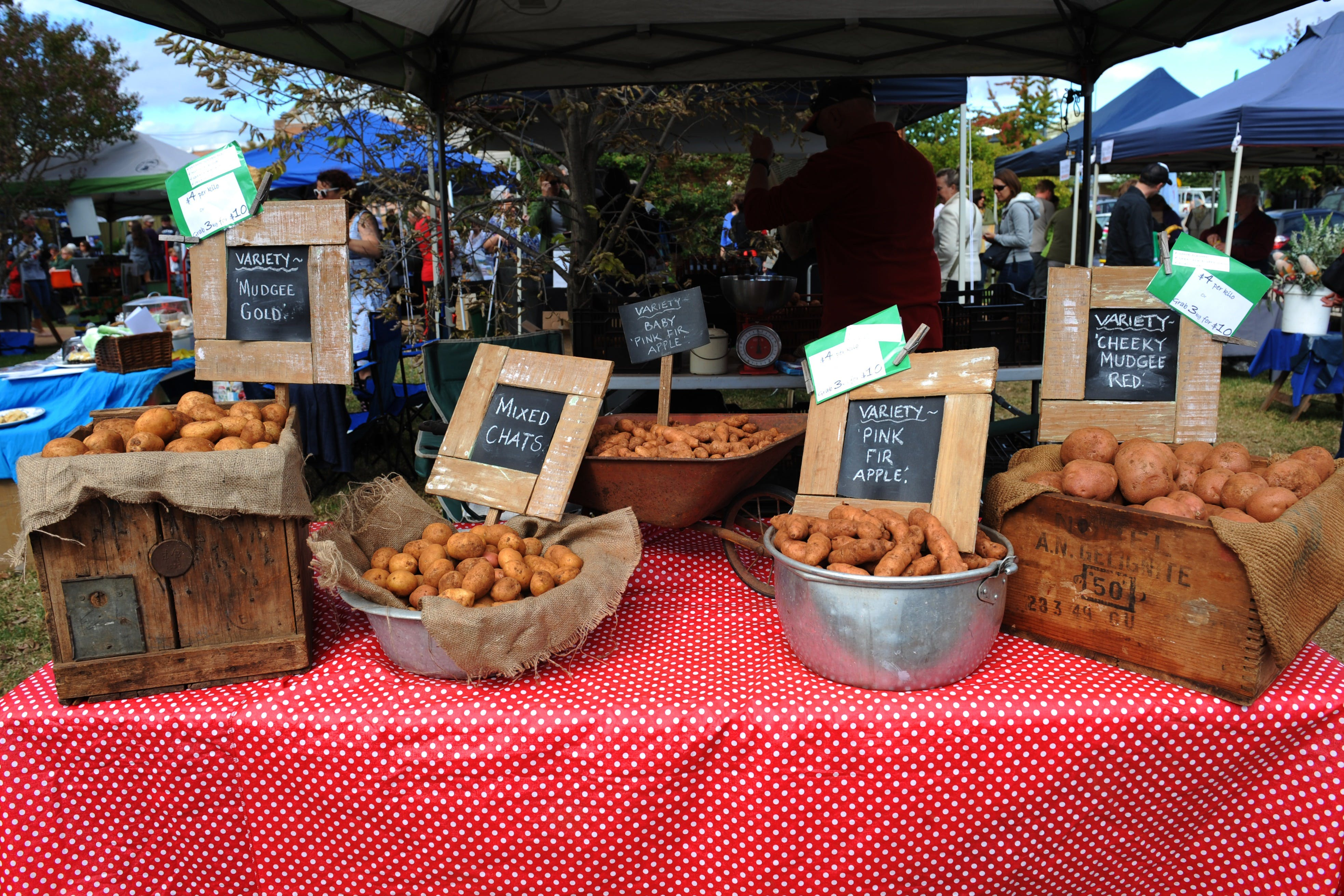 Lawson Park Markets - Accommodation Nelson Bay