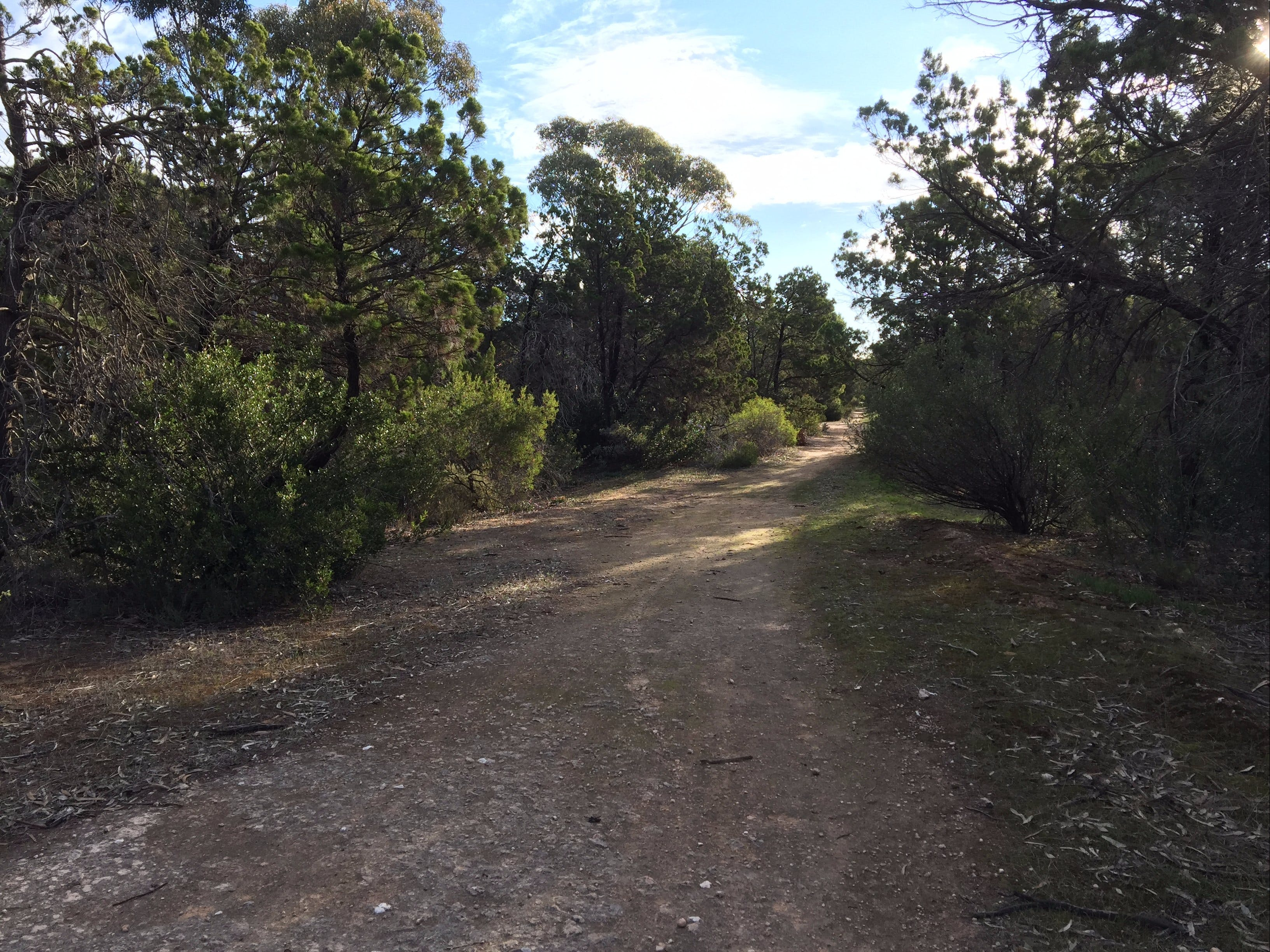 Victoria Park Moonta monthly walks - Accommodation Nelson Bay