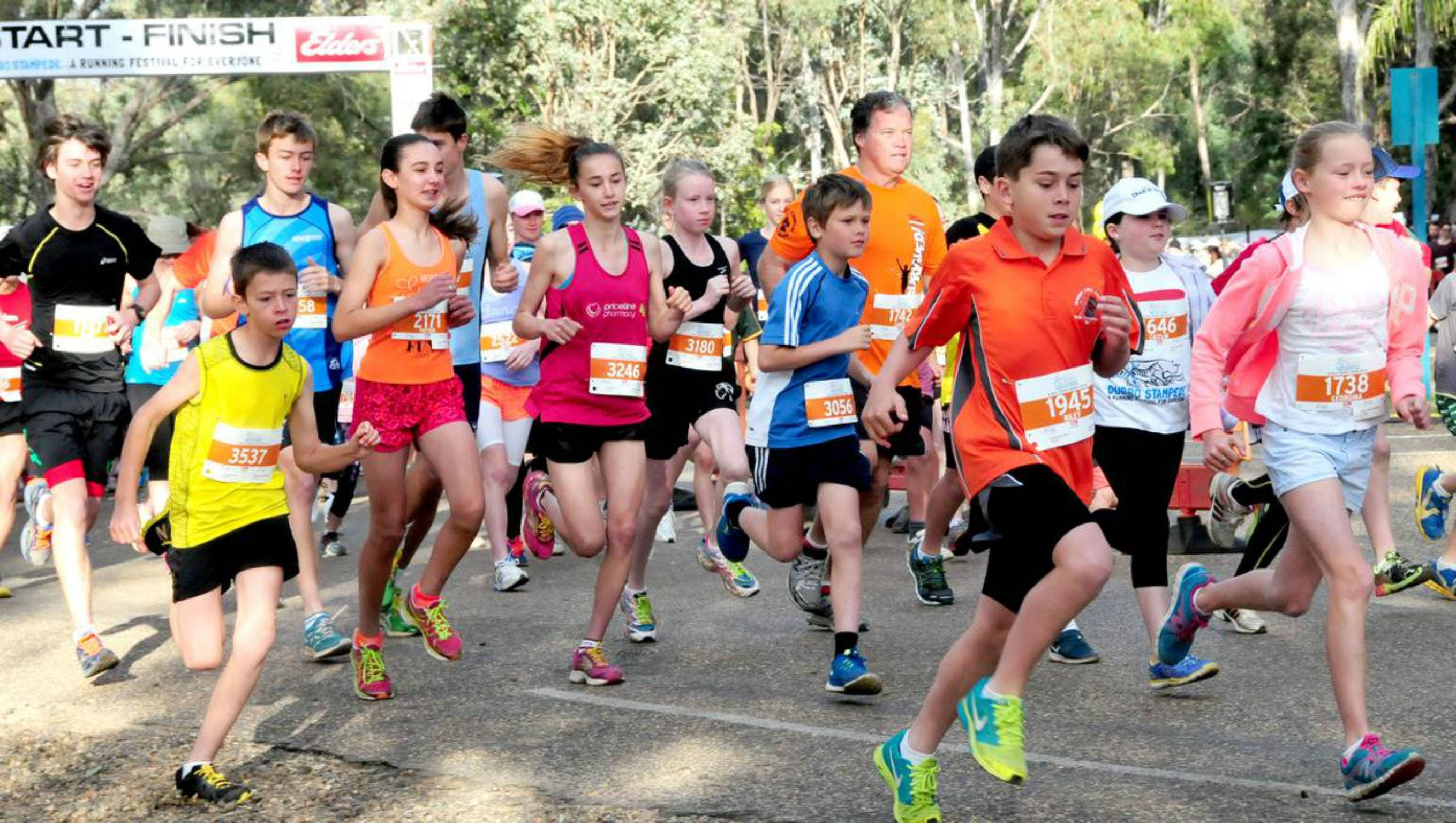 MAAS Group Dubbo Stampede Running Festival - Accommodation Nelson Bay