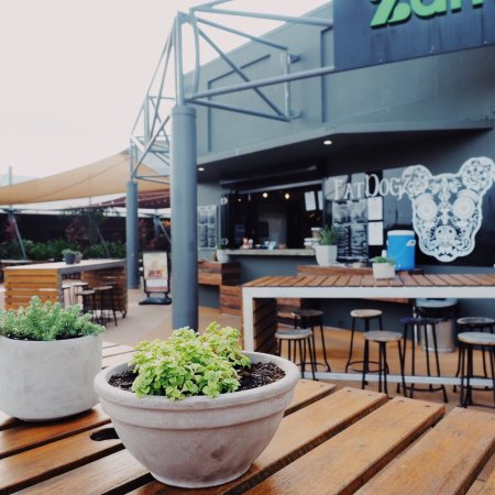 Fat Dogz - Accommodation Nelson Bay