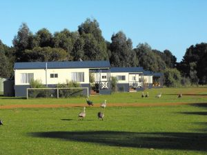 Western KI Caravan Park  Wildlife Reserve - Accommodation Nelson Bay